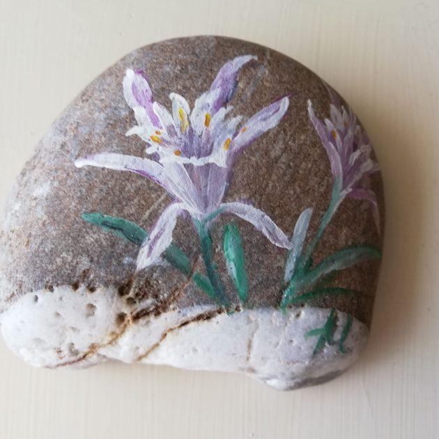 Ανεμώνη ζωγραφισμένη σε βότσαλο